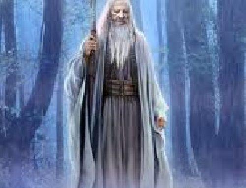 ¿Donde estan los Merlin de los arboles quemados?